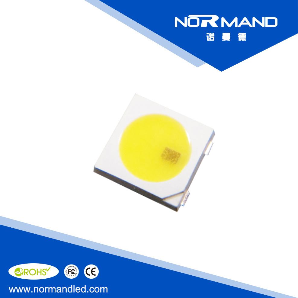 SK6812 White LED